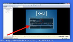 kali_and_VMware